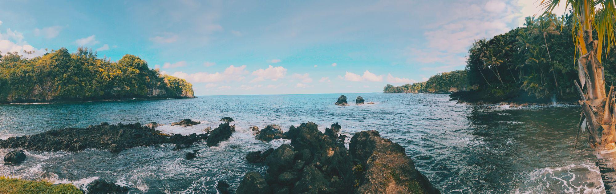 wide shot pixelwaves hawaii maui ocean trees beach